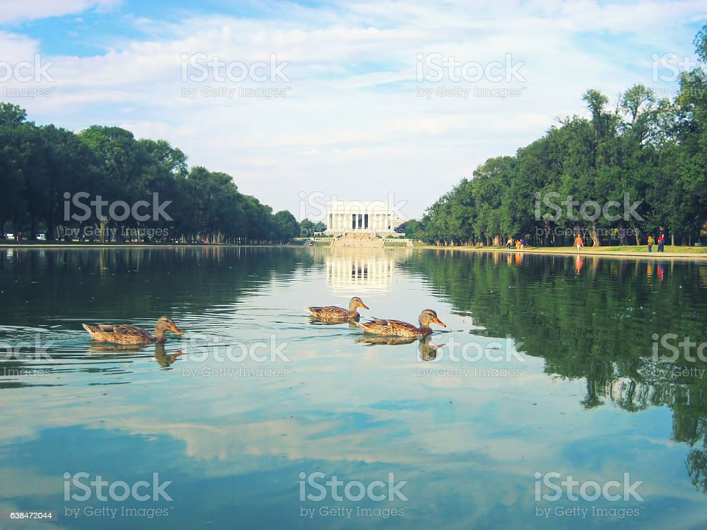Lincoln Memorial reflecting pool stock photo