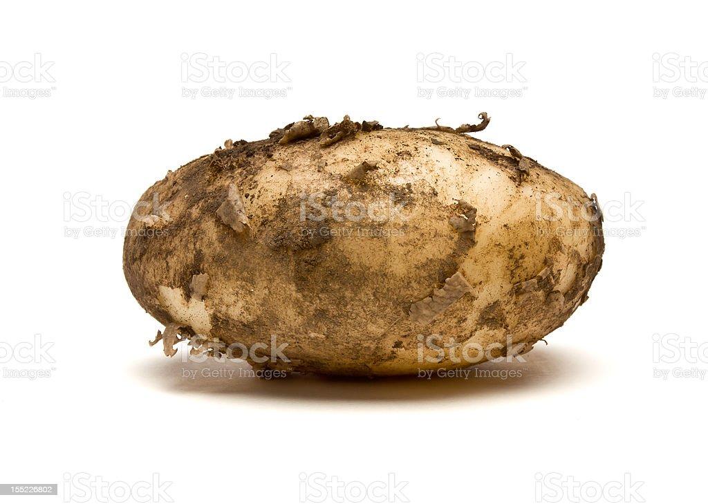 Lincoln new Potatoes stock photo