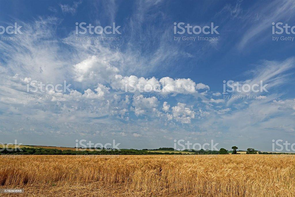 Lincolnshire Wolds Farmland,UK stock photo