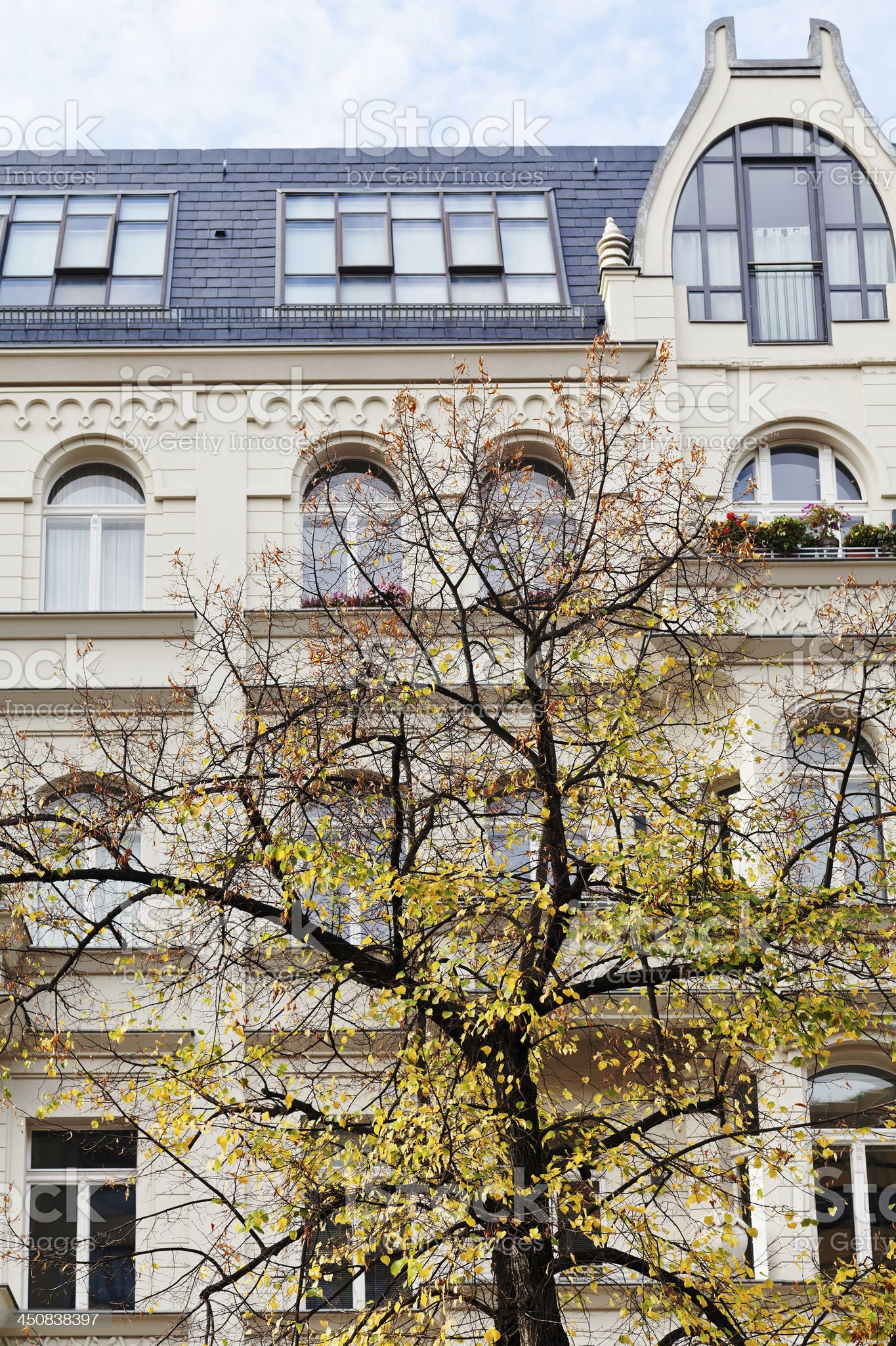 linden and facade of residential house in Berlin royalty-free stock photo