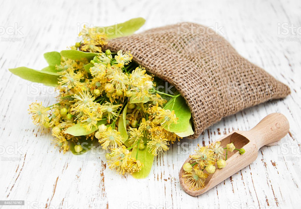 linden flowers in canvas bag stock photo