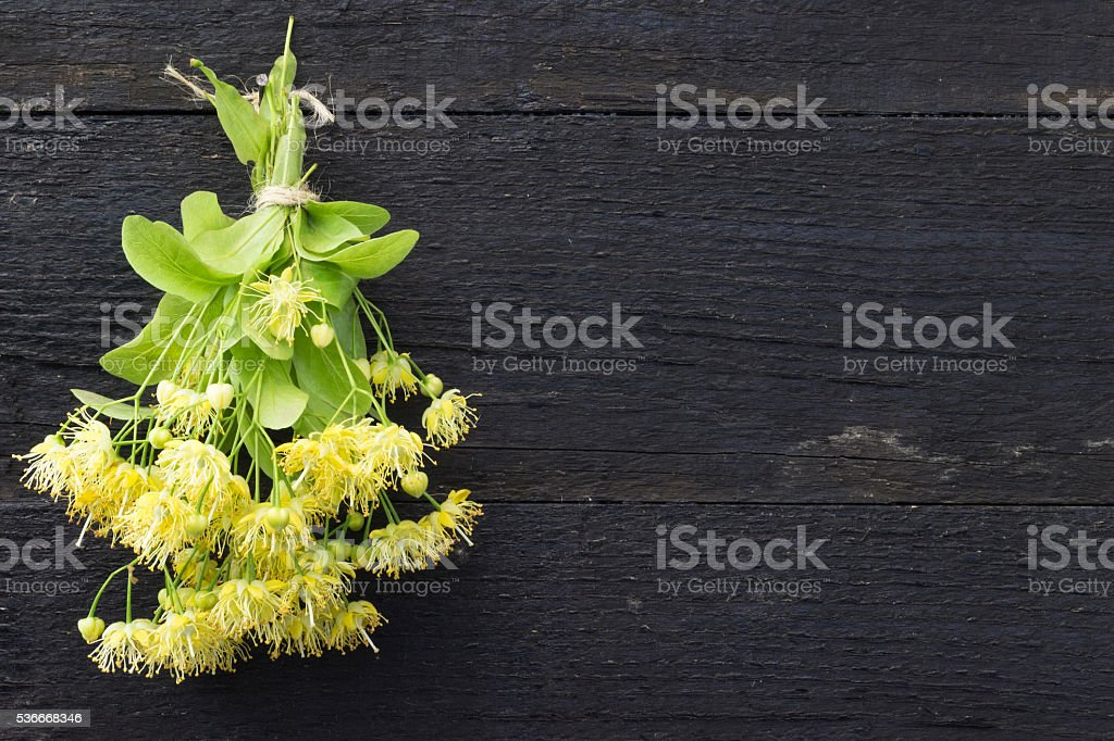 Linden flowers . Traditional medicine stock photo