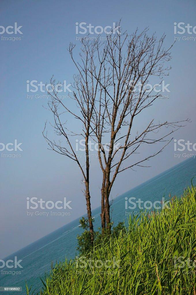 Line of horizon stock photo