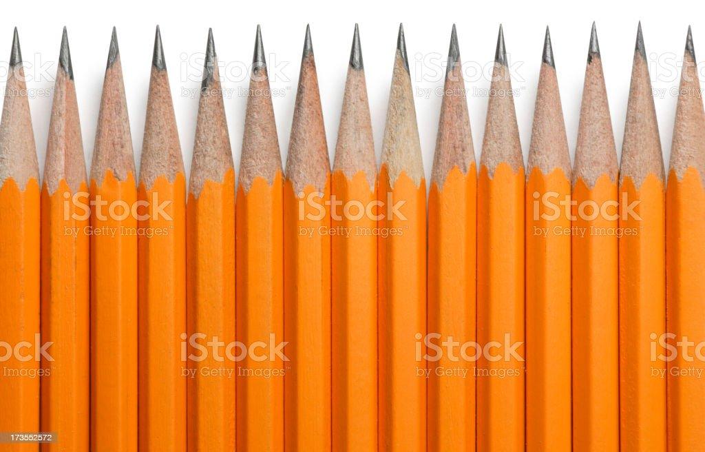 Line of Pencils stock photo