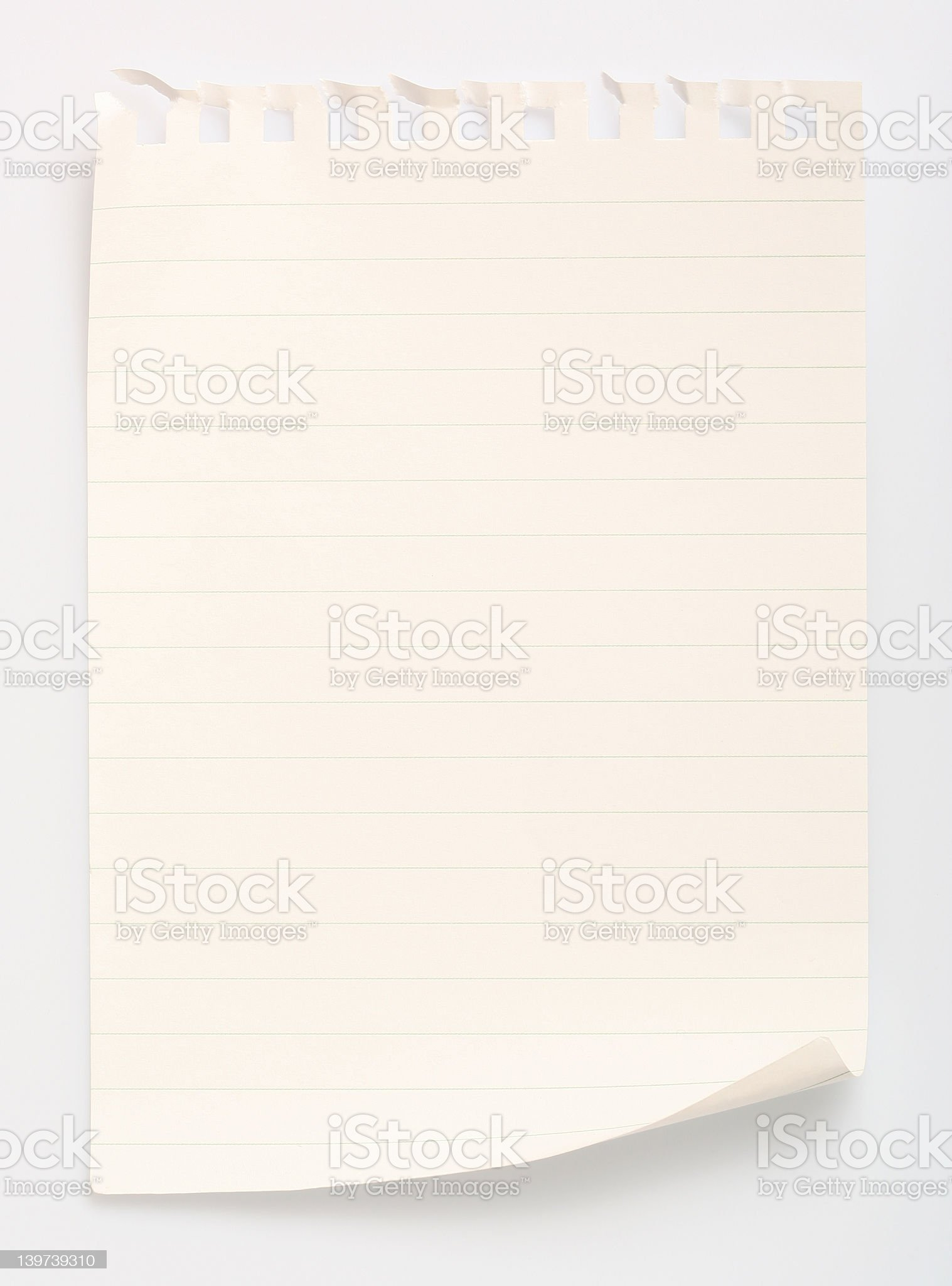 Lined notebook paper ripped from a spiral notebook royalty-free stock photo