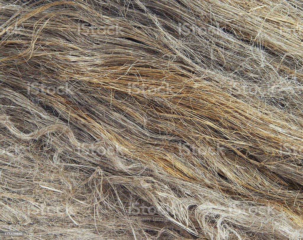 Linen fibers royalty-free stock photo