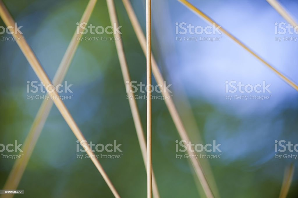 Lines in simple nature royalty-free stock photo