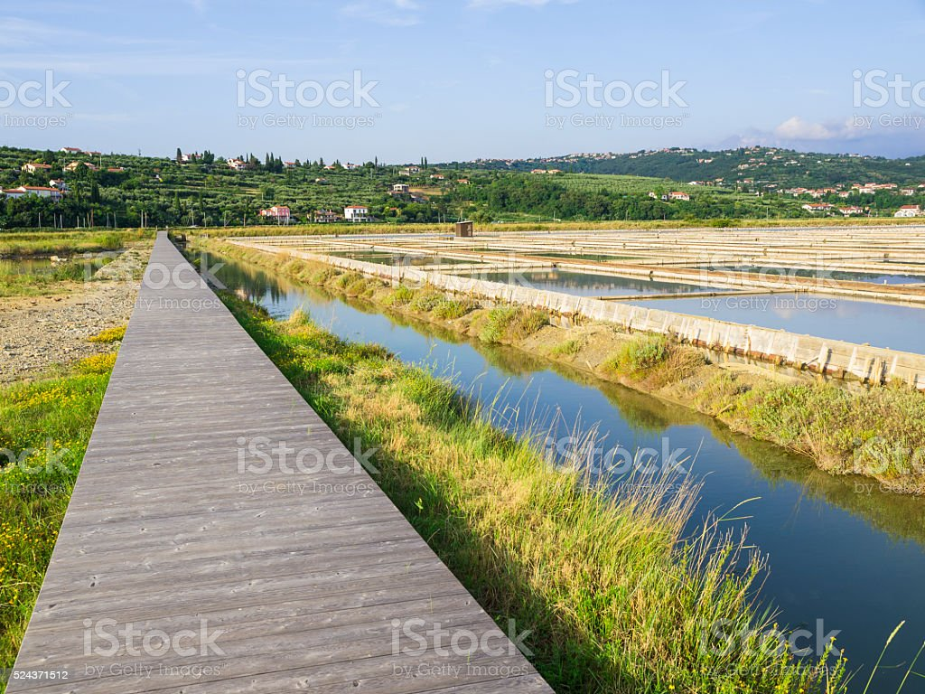 Lines of Salt Fields Soline, Slovenia stock photo