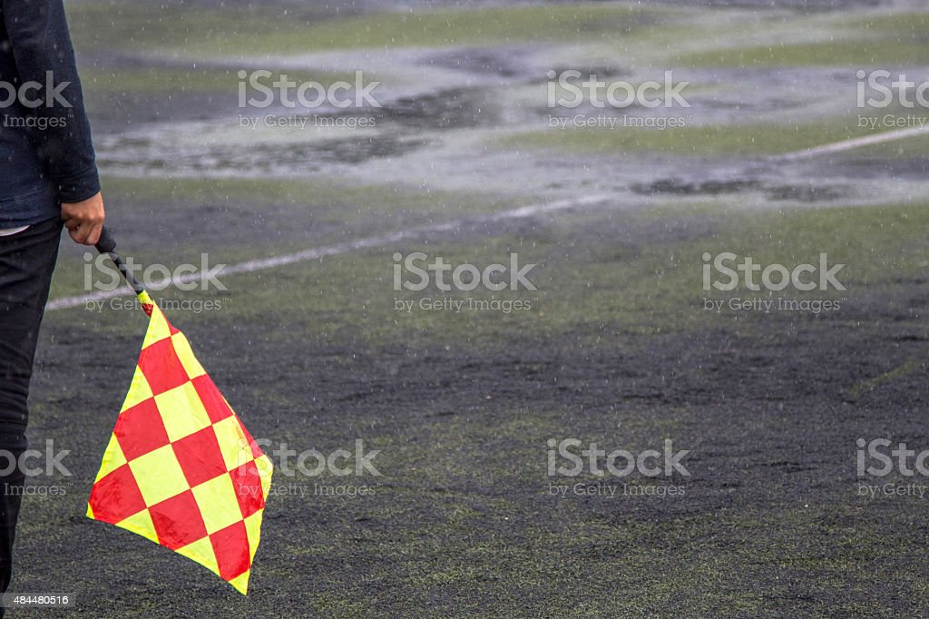 linesman holding flag standing on the pitch stock photo