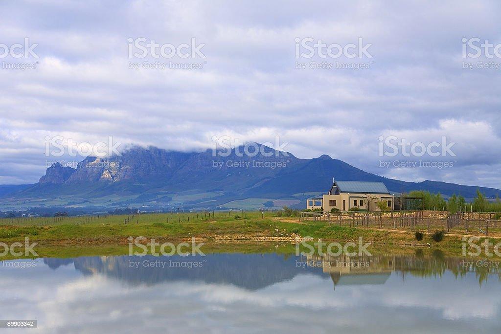 Linhorst Wine Farm stock photo