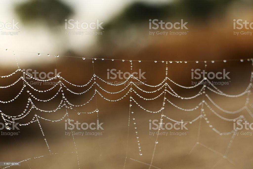Linked royalty-free stock photo