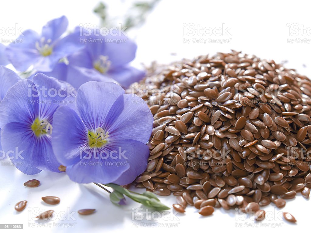 linum usitatissimum l. / linseed royalty-free stock photo