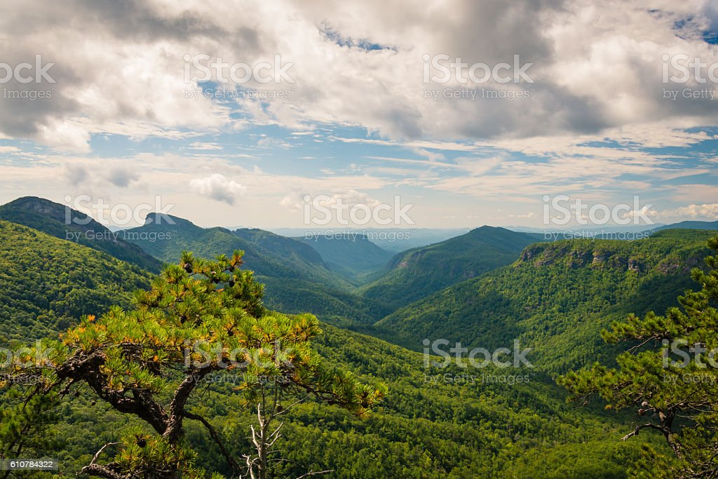 Linville Gorge Summer Afternoon stock photo