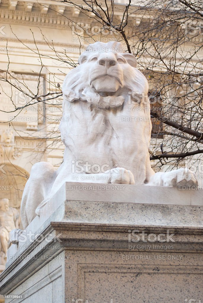 Lion at the Library stock photo