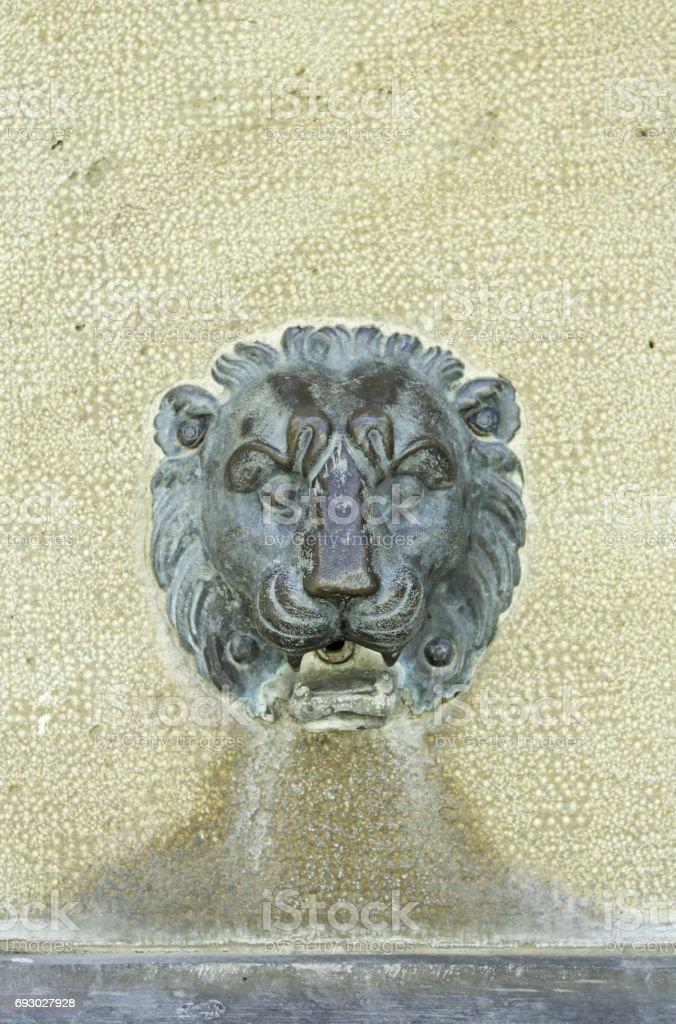 Lion copper stock photo
