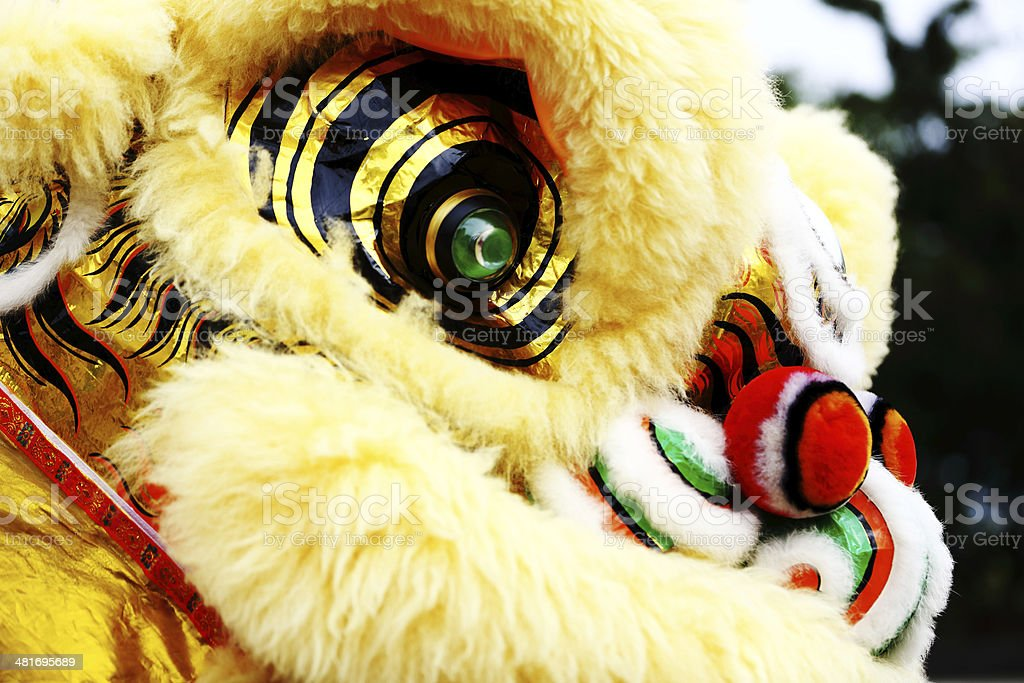 Lion Dance 1 stock photo