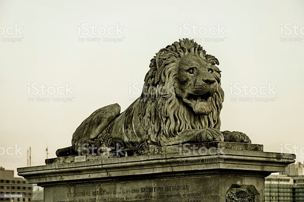 Lion detail of Chain Bridge Budapest stock photo