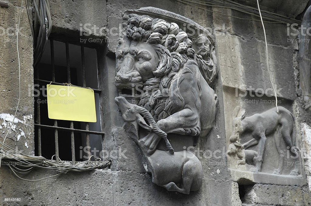Lion devouring a prey royalty-free stock photo