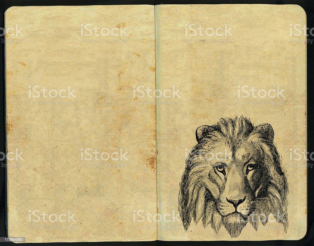 Lion Head Sketch Pad royalty-free stock photo