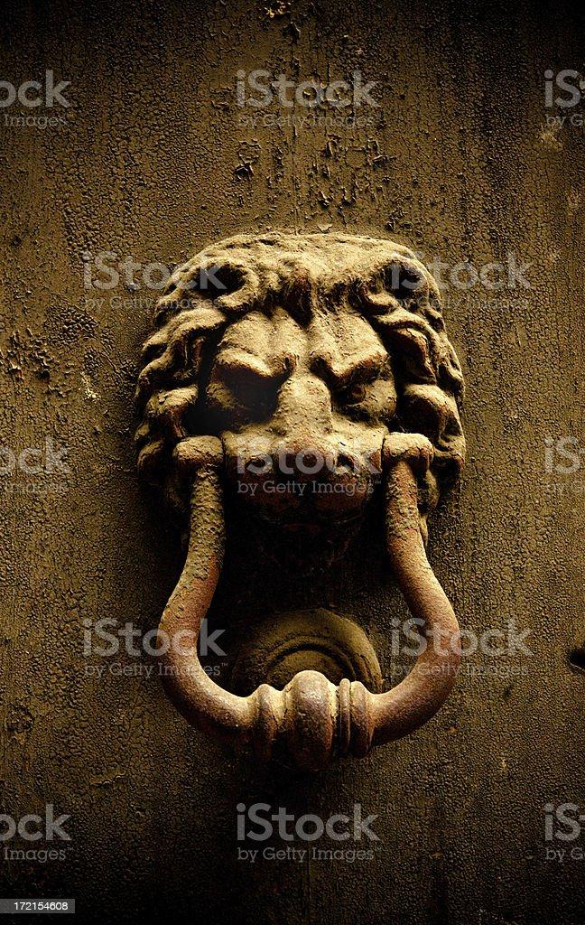 lion knocking stock photo