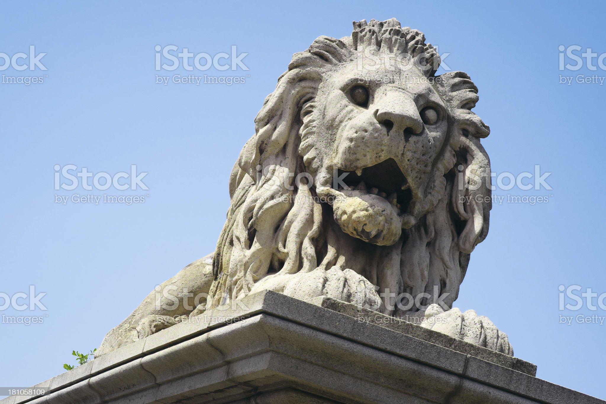 Lion of Chain Bridge, Budapest, Hungary royalty-free stock photo