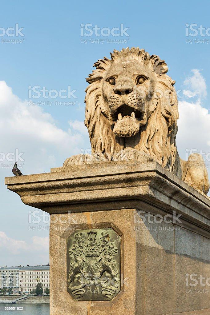 Lion of Chain Bridge in Budapest, Hungary stock photo