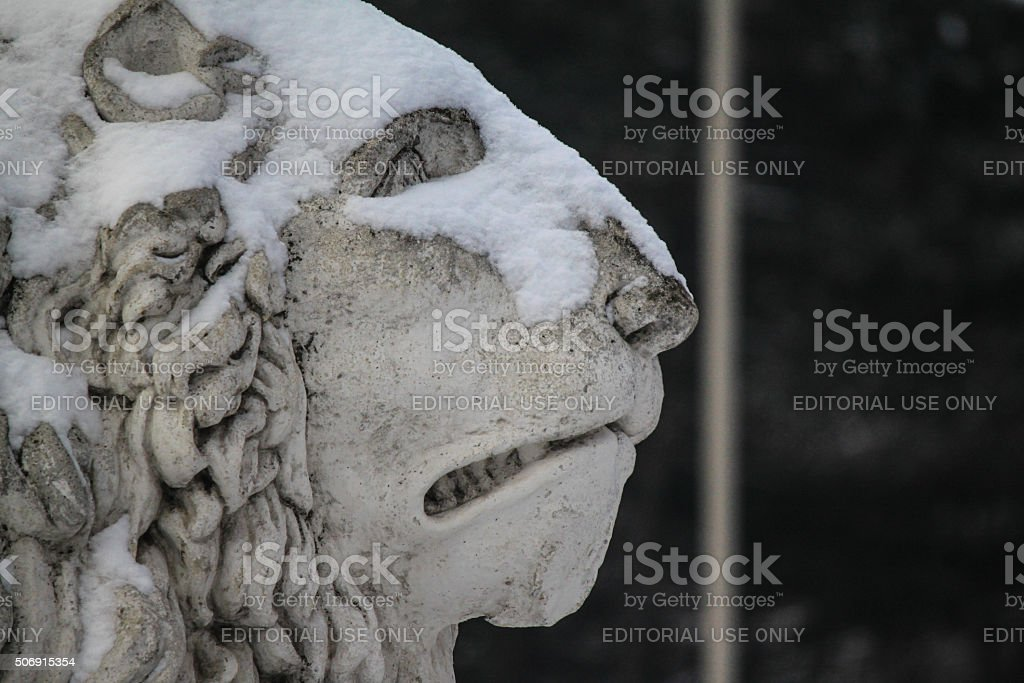 lion of schoenbrunn stock photo