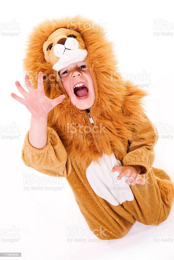 Lion! royalty-free stock photo