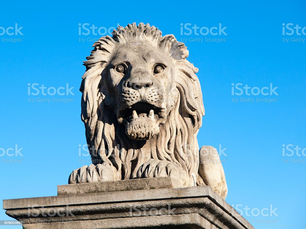 Lion sculpture on Chain Bridge in Budapest, capital city of stock photo