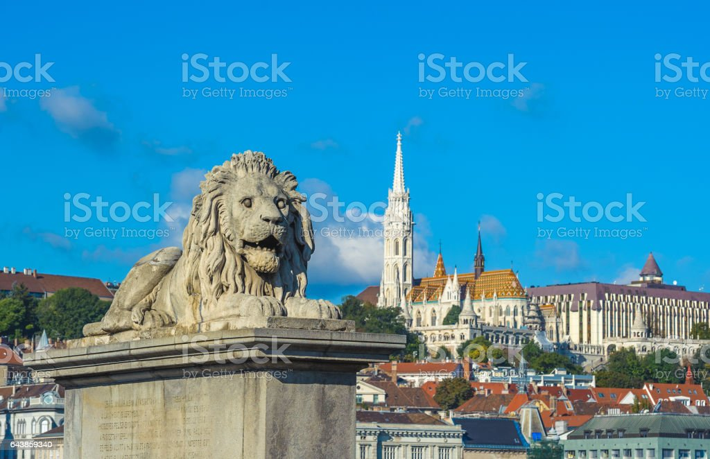 Lion sculptures of the Chain Bridge, Budapest, Hungary stock photo