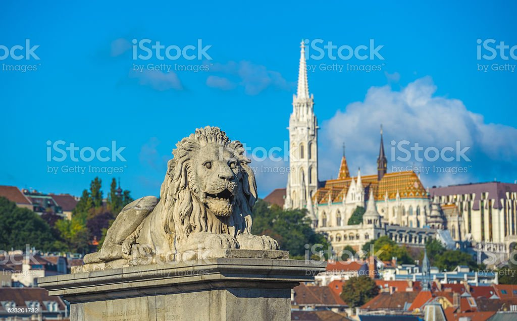 Lion sculptures of the Chain Bridge with Budapest view stock photo