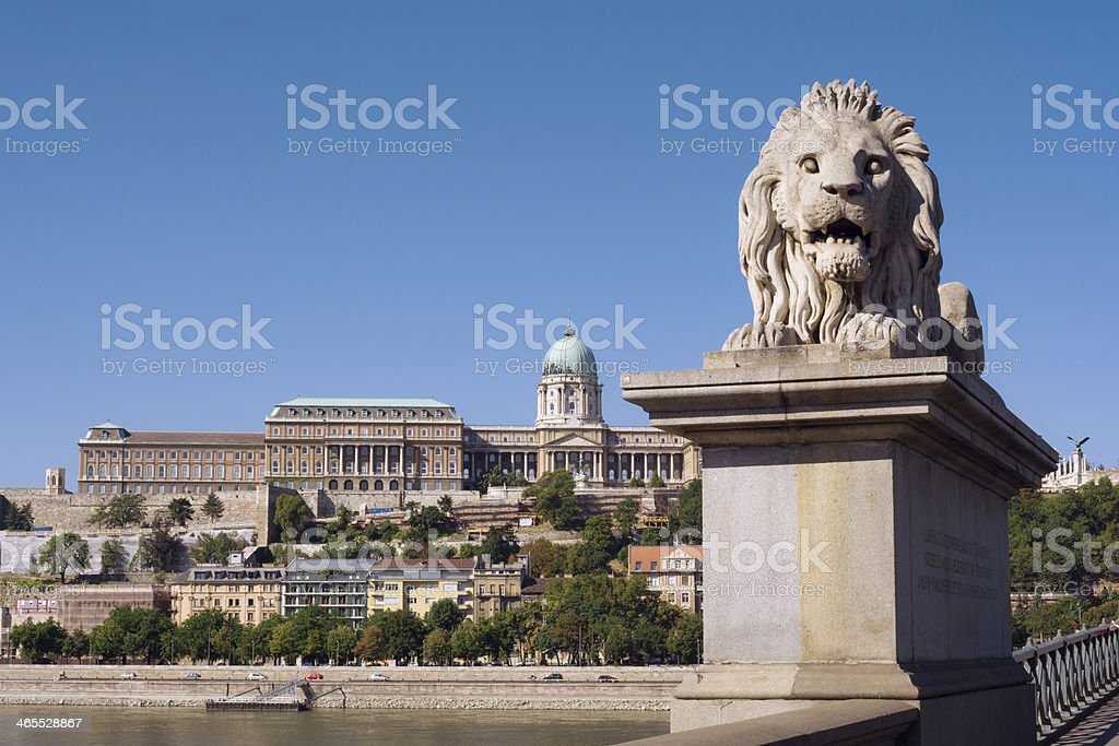 Lion statue at Chain Bridge in Budapest, Hungary royalty-free stock photo