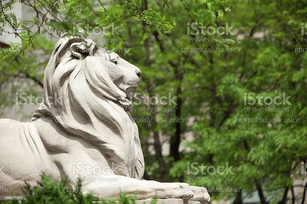 Lion statue of the New York Public Library stock photo