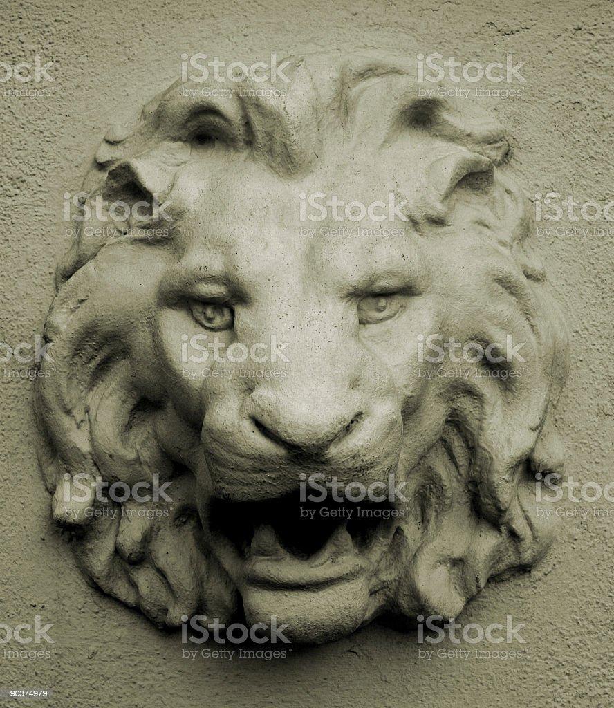 Lion Wall stock photo