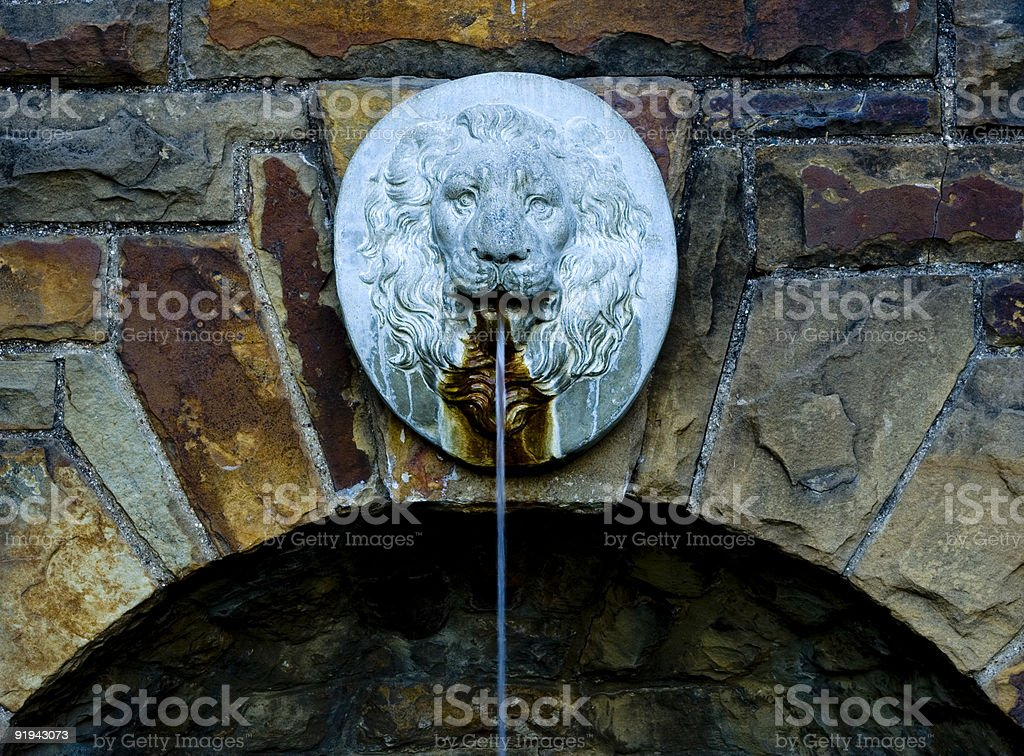 lionhead fountain stock photo