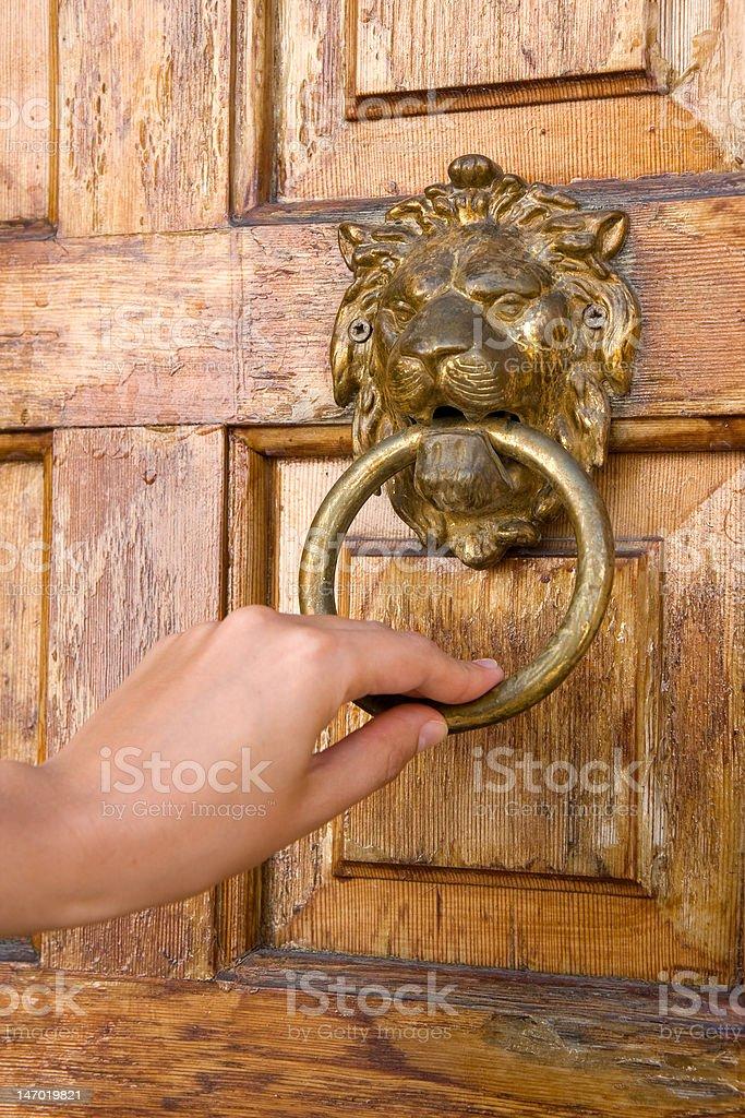 Lionhead knocker royalty-free stock photo