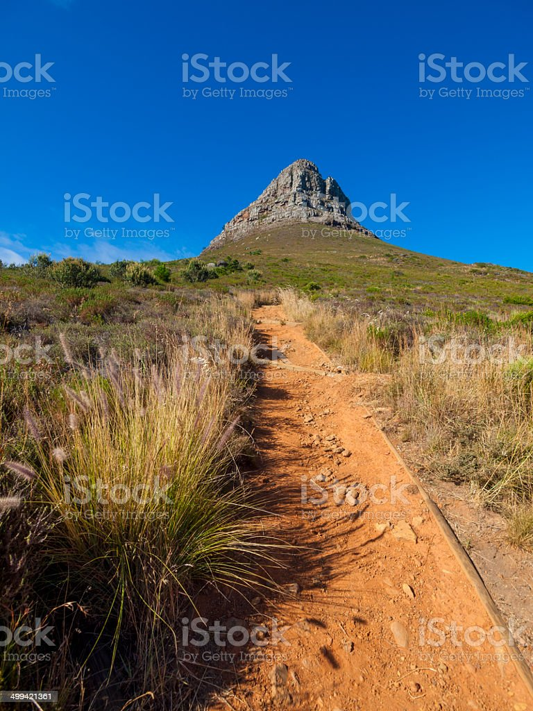 Lions Head Cape Town, South Africa stock photo