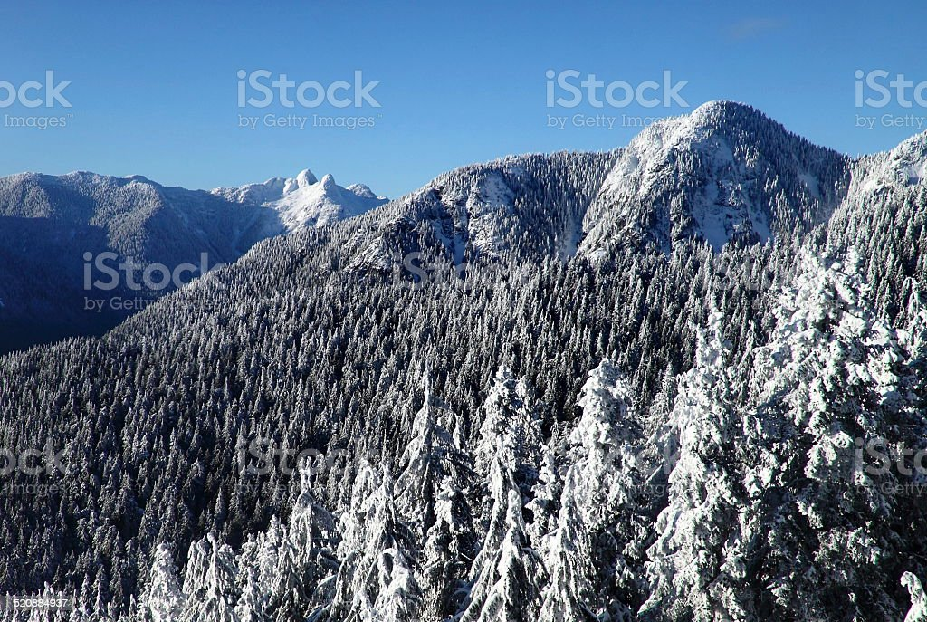 lions peaks from Grouse Mountain Vancouver stock photo