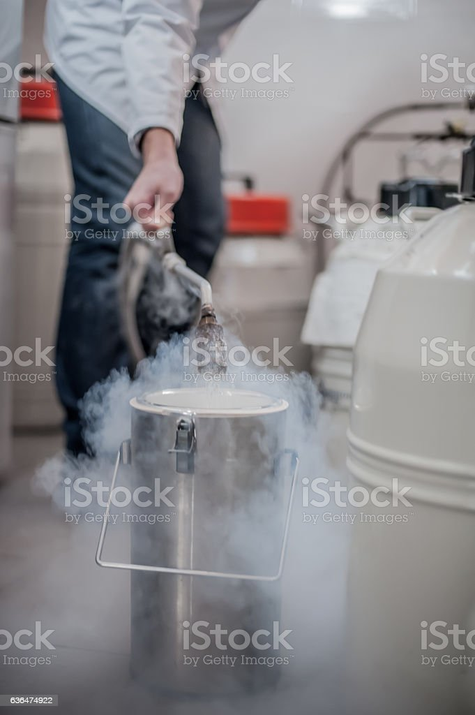 Liquid nitrogen technician fills cryogenic container stock photo