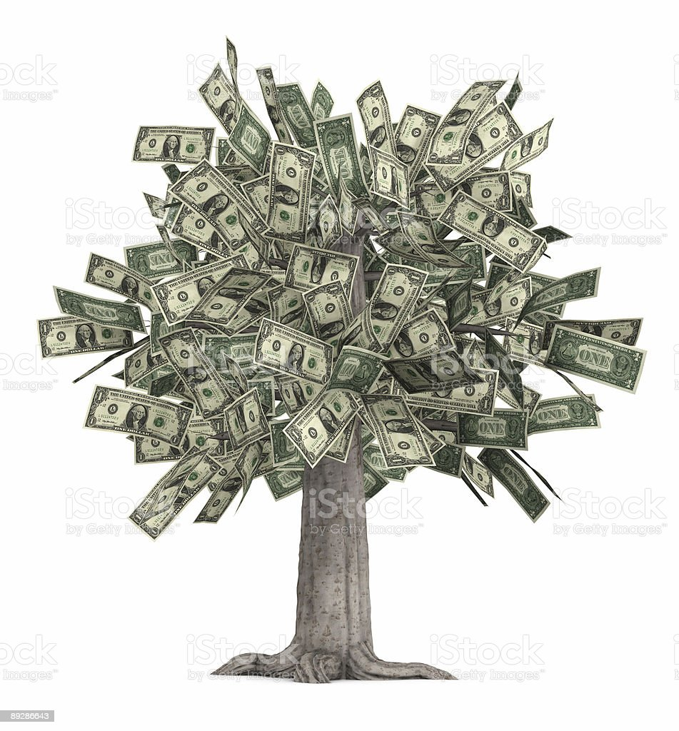 Literal money tree with dollar bills for leaves stock photo