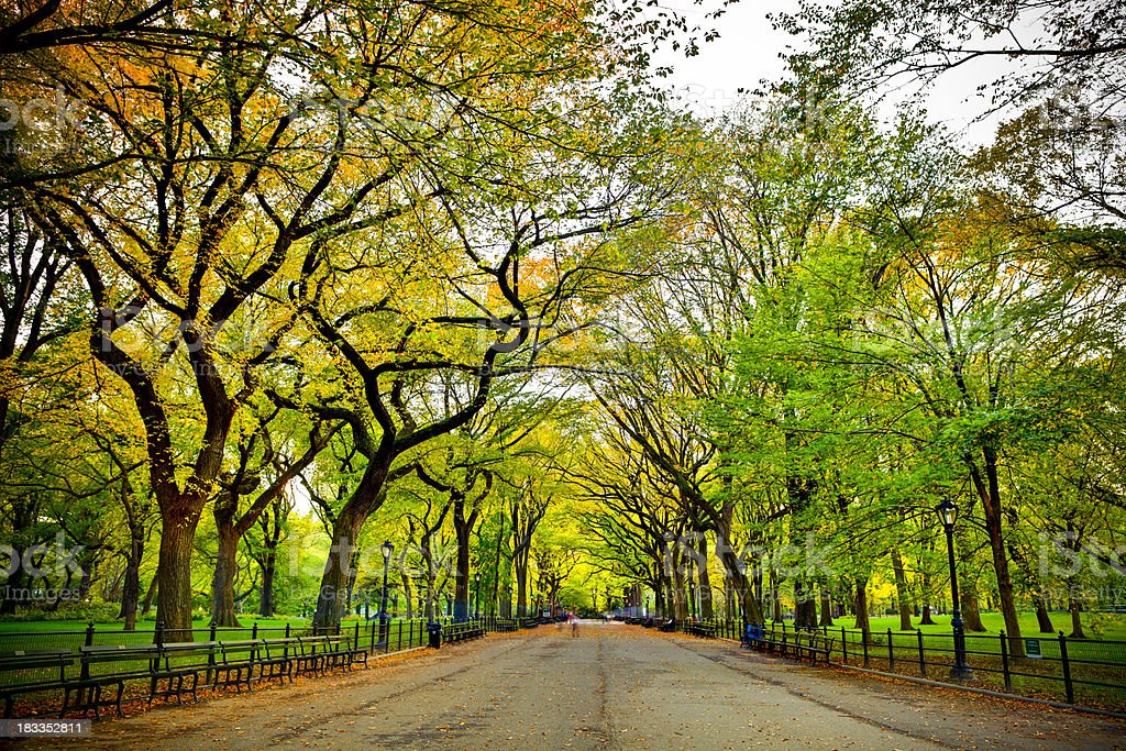 Literary Walk in Central Park at fall stock photo