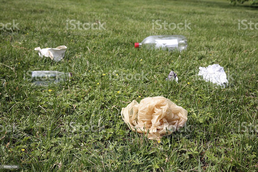 Litter Grass royalty-free stock photo