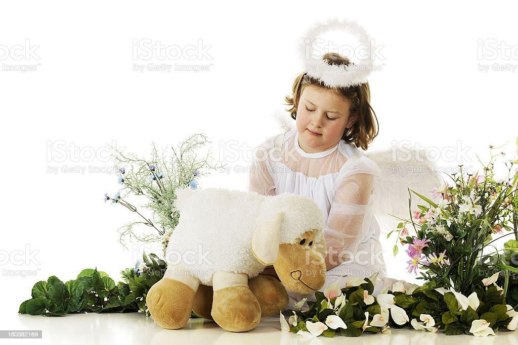 Little Angel Tending a Lamb stock photo