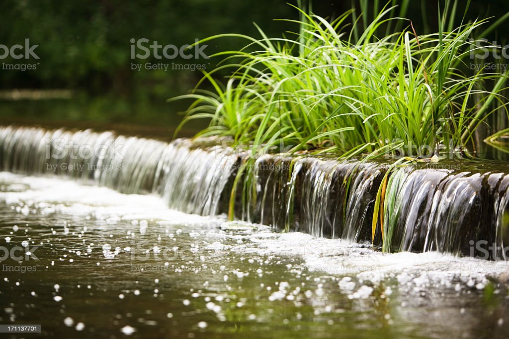Little artificial waterfall with green sedge stock photo