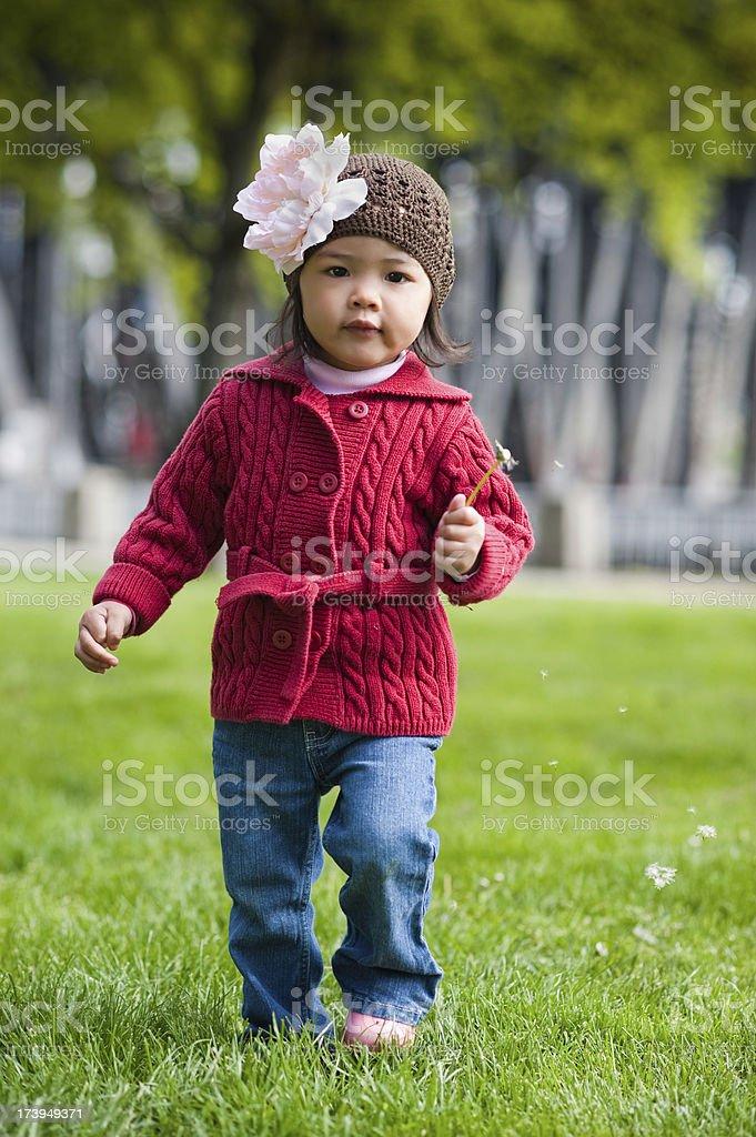 Little asian american girl walks with dandelion stock photo
