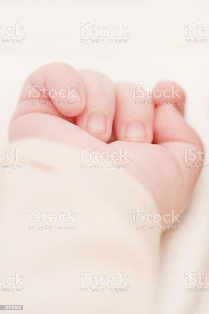 Little baby hand stock photo