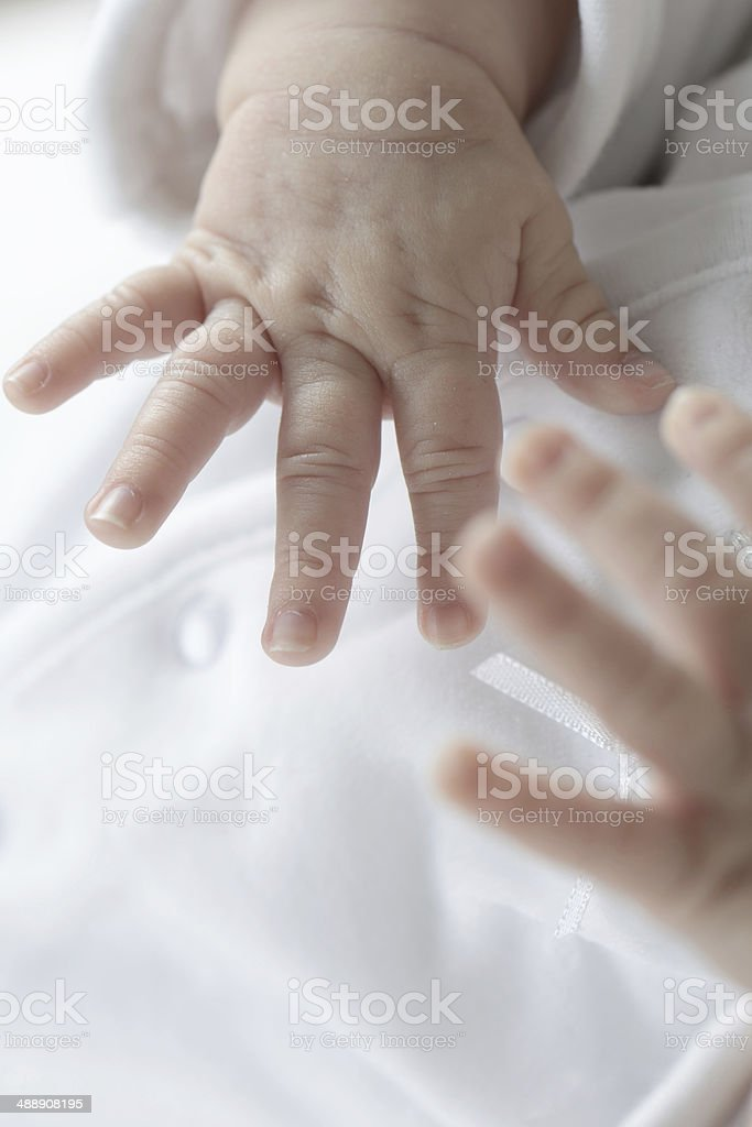 Little Baby Hands Closeup Highkey stock photo
