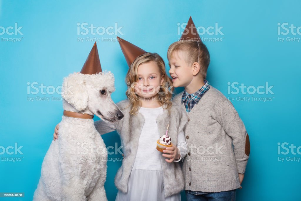 Little beautiful girl and handsome boy with dog celebrate birthday....