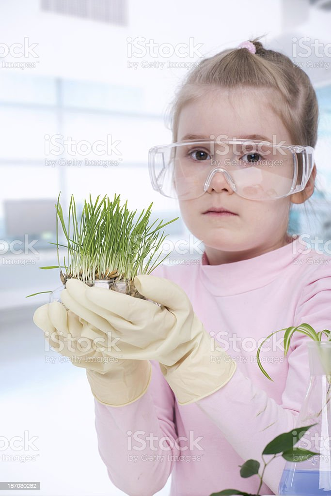 Little biologist royalty-free stock photo