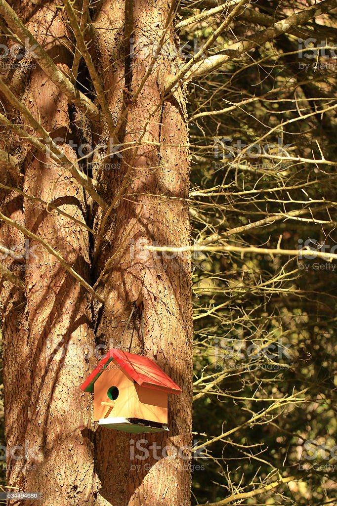 Little Bird House stock photo